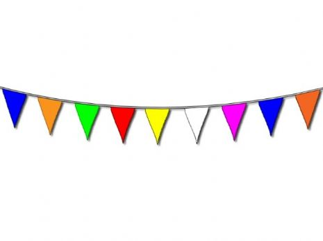 Bunting Multi Colour 20 on 10m Polyester